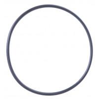 О-пръстен за водоструйки BOSCH AQUATAK 10, AQUATAK 100